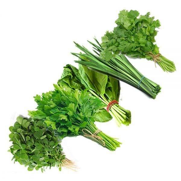 عکس شاخص سبزی قرمه تازه در دسته 5 کیلوگرمی