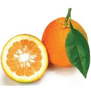 عکس شاخص،نارنج در سبد 10 کیلوگرمی