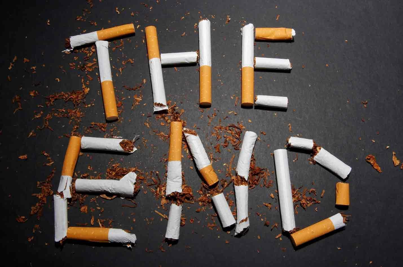 سیگار پال مال آبی در بسته 10 عددی