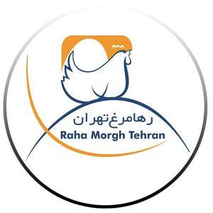 عکس شاخص تخم مرغ سبک رها در 6 شانه 30 عددی