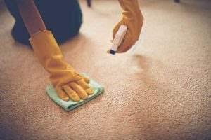 پاک کردن لکههای فرش در منزل