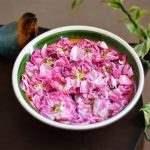غنچه خشک گل محمدی 100 گرمی مرجانه