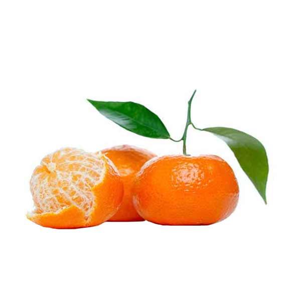 عکس شاخص،نارنگی ممتاز در سبد 10 کیلوگرمی