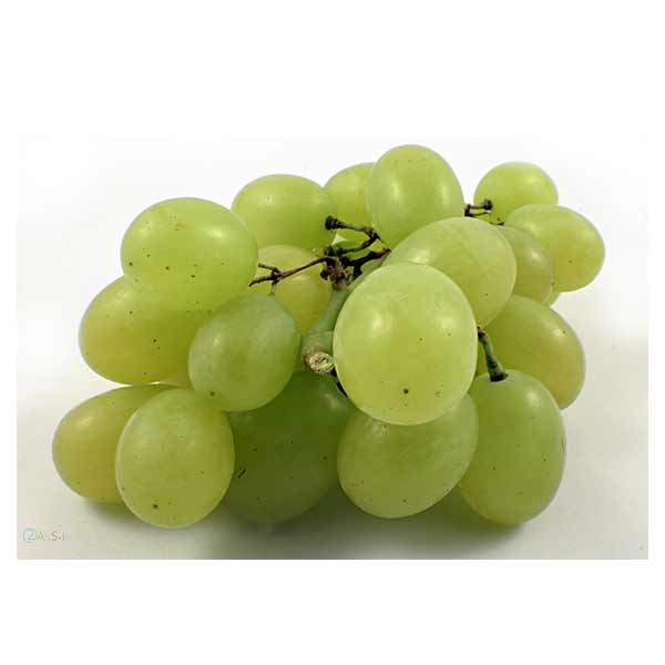 انگور سفید درشت لوکس در سبد 10 کیلوگرمی