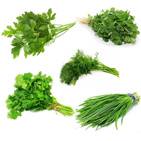 سبزی قرمه منجمد در بسته بندی 5 کیلوگرمی