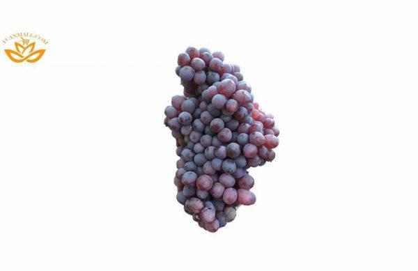 انگور یاقوتی در سبد 10 کیلوگرمی