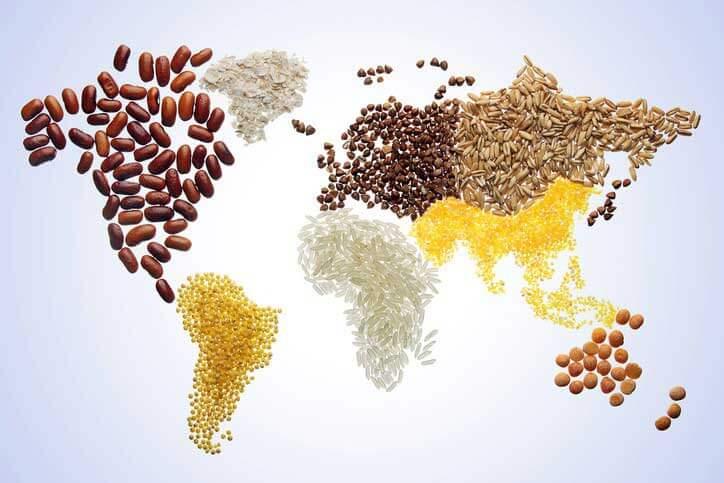امنیت غذایی در قرن 21