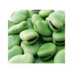 باقلا سبز در سبد 10 کیلوگرمی