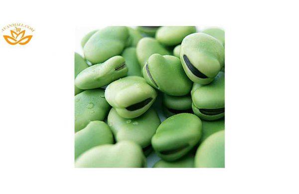 باقلا سبز درجه 1 در سبد 10 کیلوگرمی